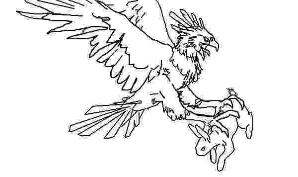 harpy eagle coloring page eagle coloring pages getcoloringpagescom coloring harpy page eagle