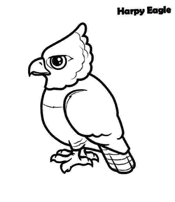 harpy eagle coloring page harpy eagle drawing at getdrawingscom free for personal eagle page coloring harpy