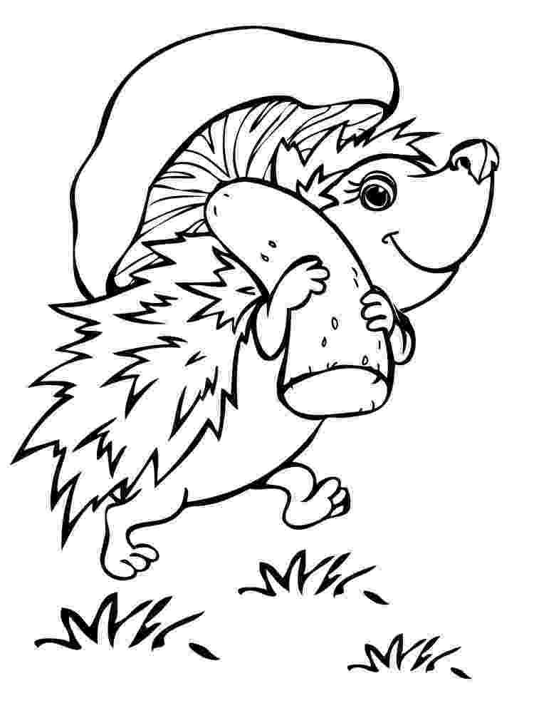 hedgehog coloring page free printable hedgehog coloring pages for children page coloring hedgehog