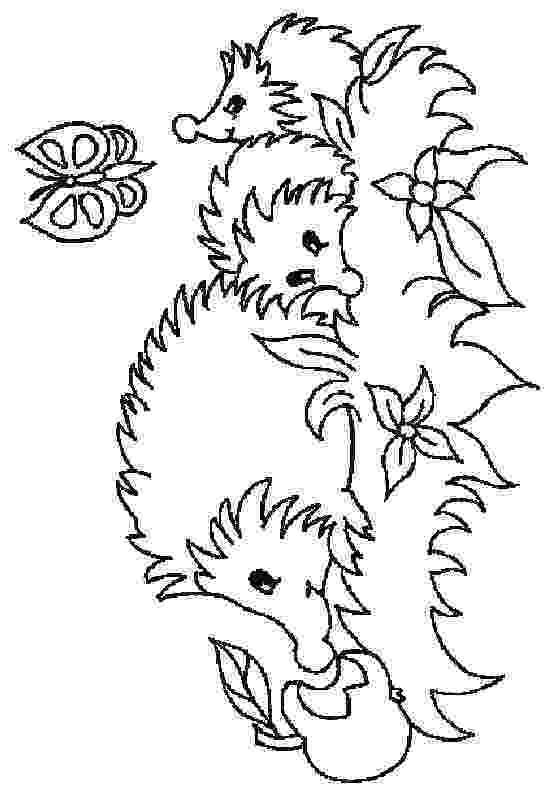 hedgehog coloring page kids n funcom 32 coloring pages of hedgehogs coloring page hedgehog