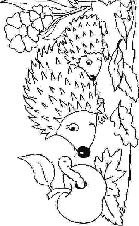 hedgehog coloring page kids n funcom 32 coloring pages of hedgehogs page hedgehog coloring