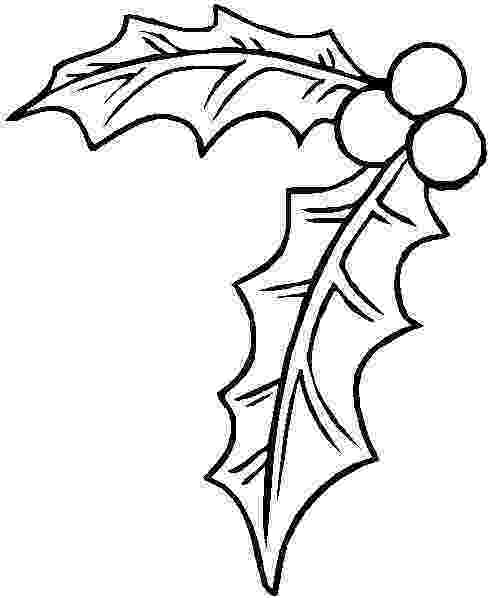 holly coloring pages christmas holly coloring pages holly and berry xmas coloring holly pages