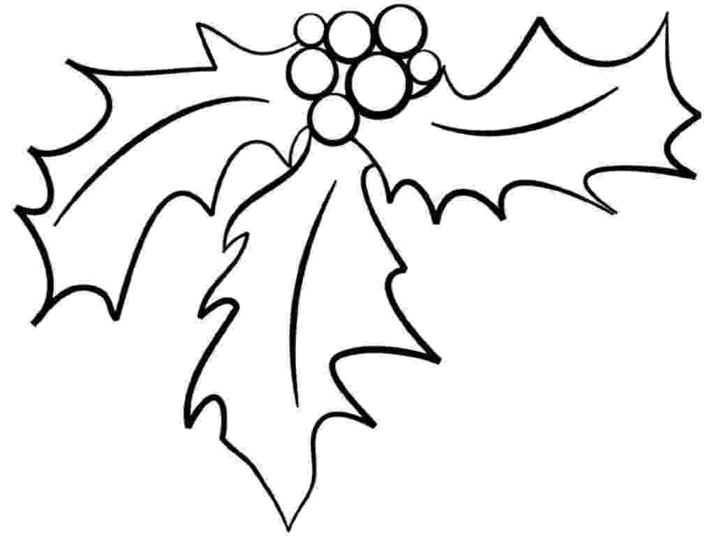 holly coloring pages printable christmas holly coloring pages coloring home holly coloring pages