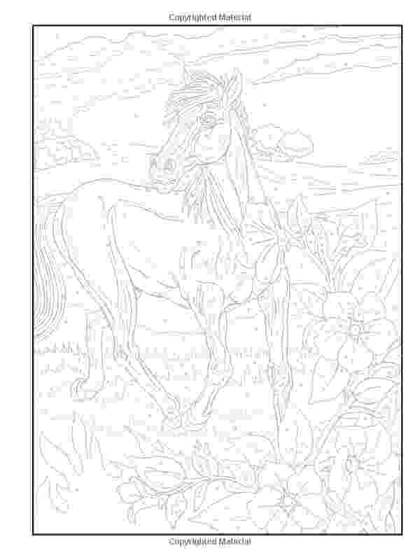 horse color by number 1000 images about dover horse colouring pages on horse color by number