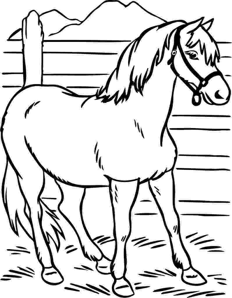 horse coloring pages to print for free horse coloring pages preschool and kindergarten for free print horse pages coloring to