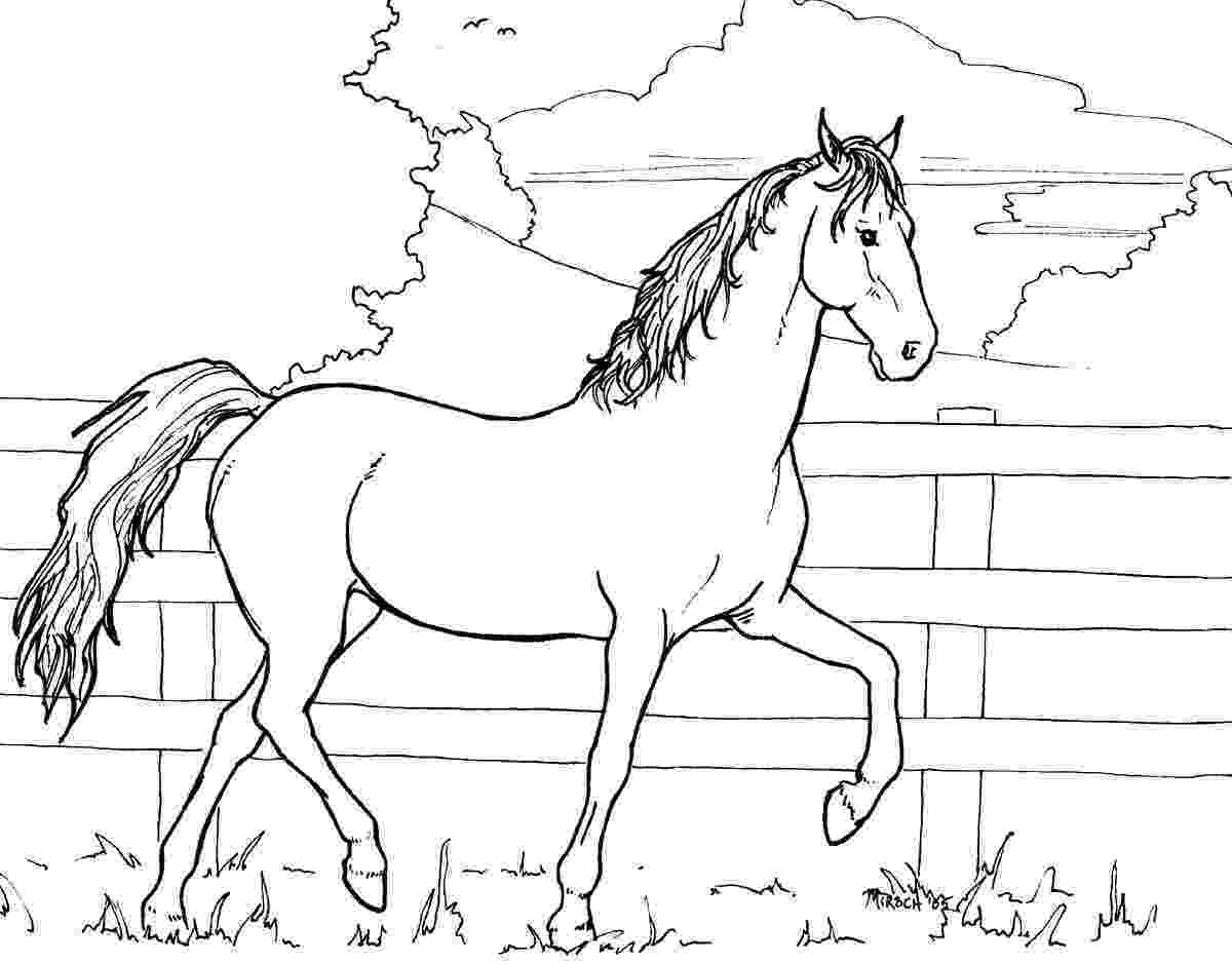 horse colouring picture mare and foal coloring pages hellokidscom horse picture colouring