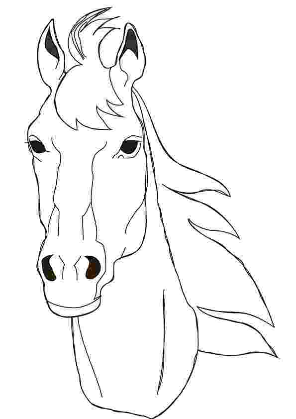 horse face coloring page free printable horse coloring pages for kids cool2bkids coloring horse page face