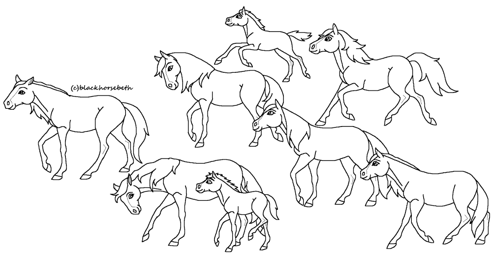 horse herd coloring pages horse herd coloring pages coloring pages horse herd