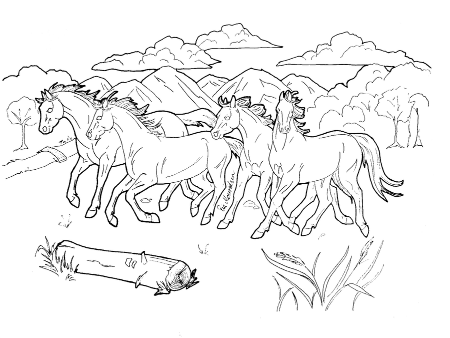 horse herd coloring pages horse herd coloring pages horse pages coloring herd