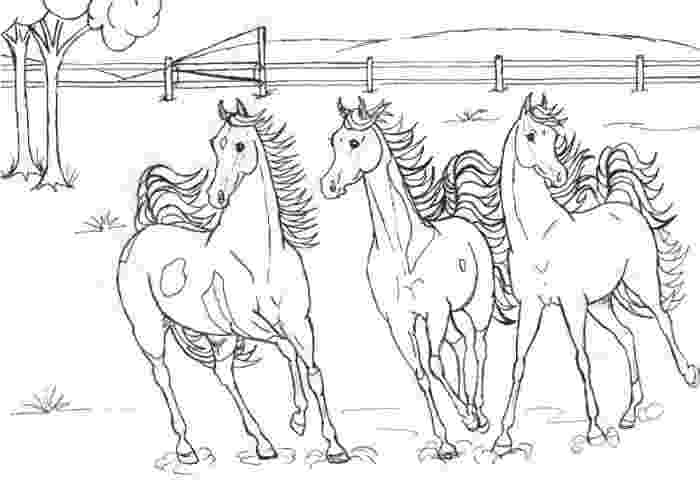 horse herd coloring pages wild horses coloring pages getcoloringpagescom coloring horse pages herd