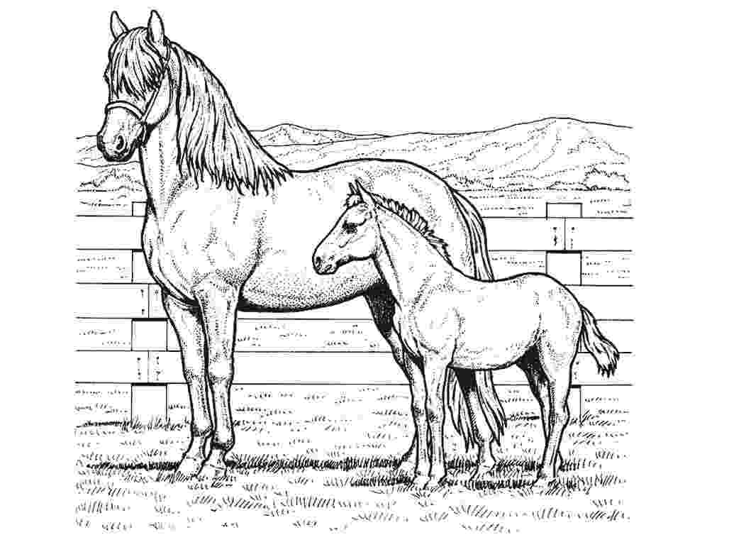 horse picture to colour coloring town to horse picture colour