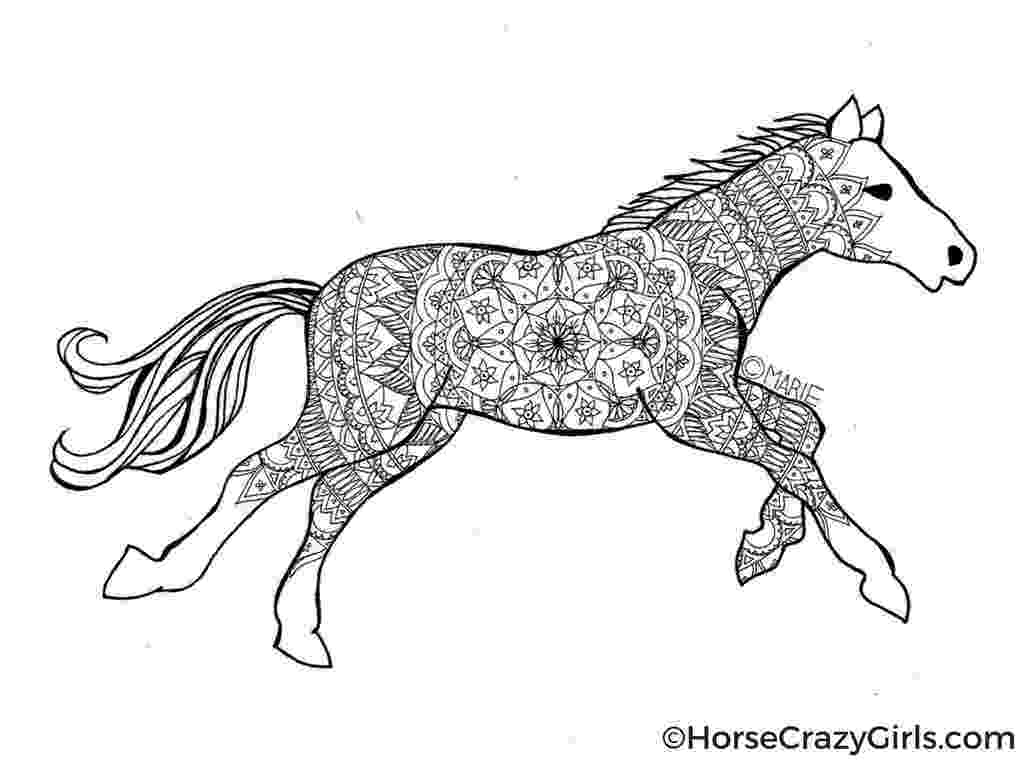 horse picture to colour coloring town to picture horse colour