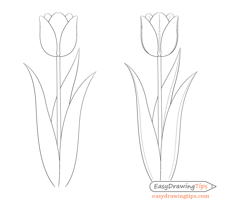 how to sketch a tulip how to draw a tulip step by step drawing tutorials for tulip how a to sketch