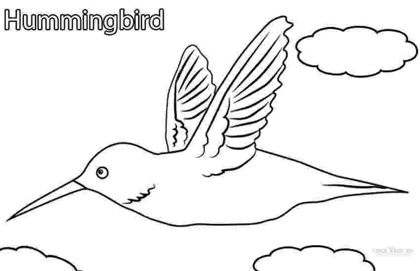 hummingbird coloring sheet hummingbird coloring pages to download and print for free sheet coloring hummingbird 1 2