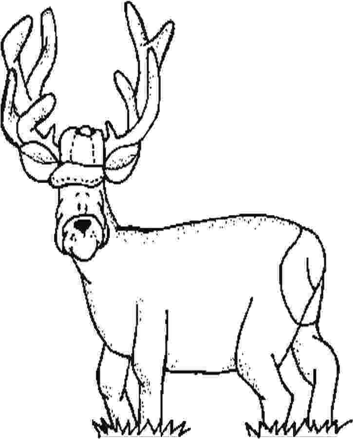 hunting coloring pictures 23 best woods and hunting coloring pages for kids pictures coloring hunting