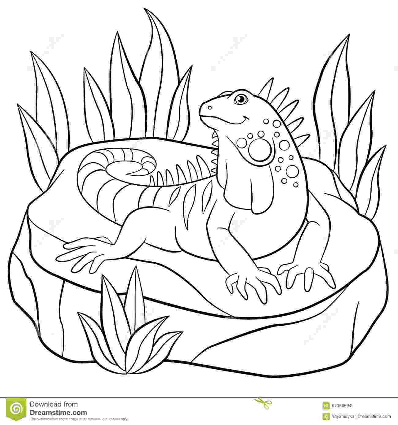iguana coloring page iguana coloring pages getcoloringpagescom coloring iguana page