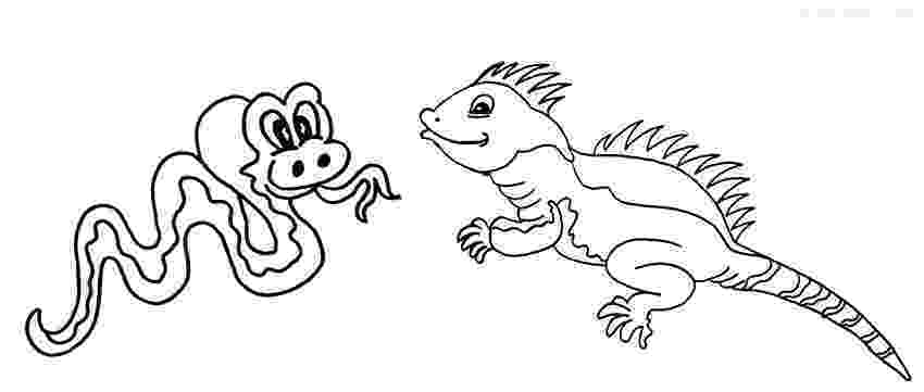iguana coloring page iguana coloring pages to download and print for free coloring iguana page