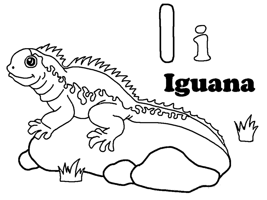 iguana coloring page printable iguana coloring pages for kids cool2bkids iguana coloring page