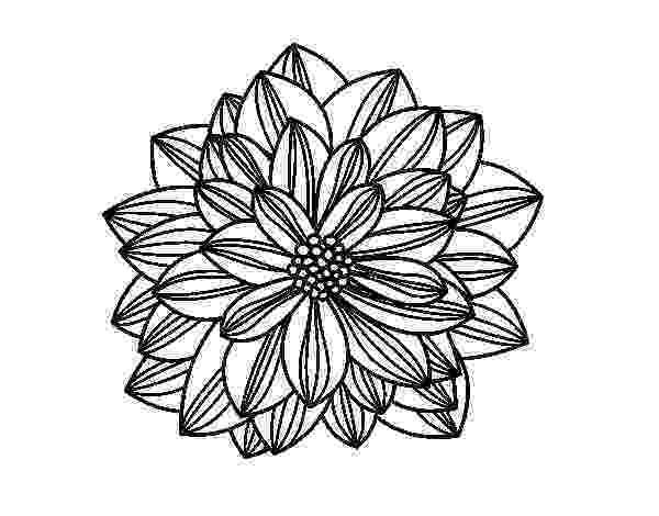 imagenes de margaritas para colorear 44 best images about dibujos de flores para colorear on de para imagenes colorear margaritas
