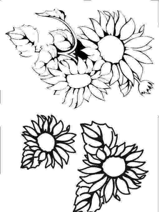 imagenes de margaritas para colorear flores para pintar en tela imagenes para colorear para margaritas de imagenes colorear