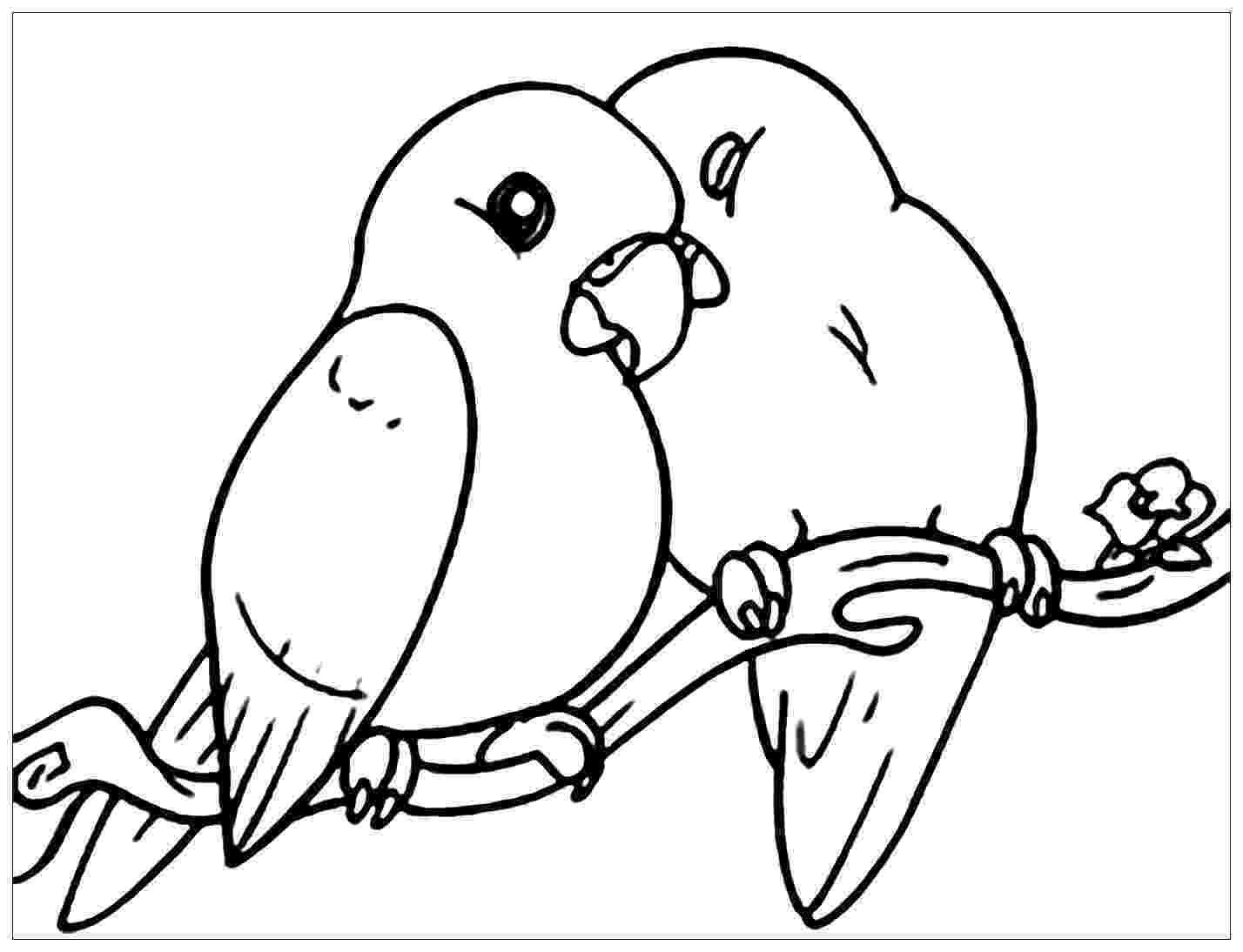 images of birds for colouring bird coloring pages of images birds for colouring
