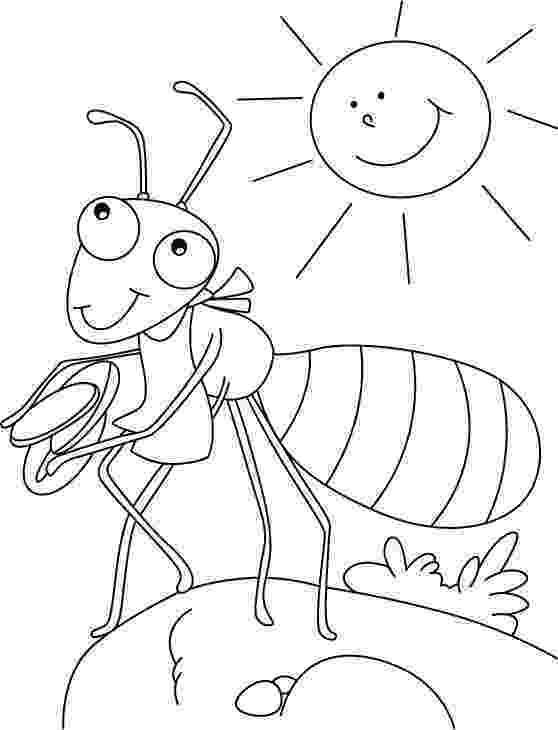insect coloring pages preschool ant coloring page insect coloring pages ant crafts preschool pages coloring insect