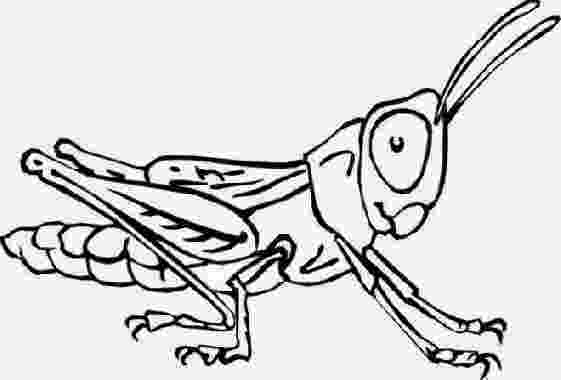 insect coloring sheets free printable bug coloring pages for kids sheets insect coloring
