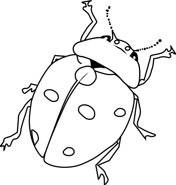 insects for coloring bugs coloring page stock illustration illustration of insects coloring for