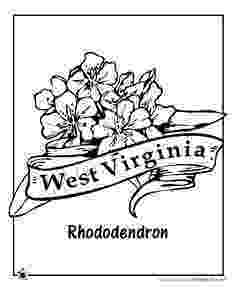 iowa state flower iowa state outline coloring page cc cycle 3 week 6 flower state iowa