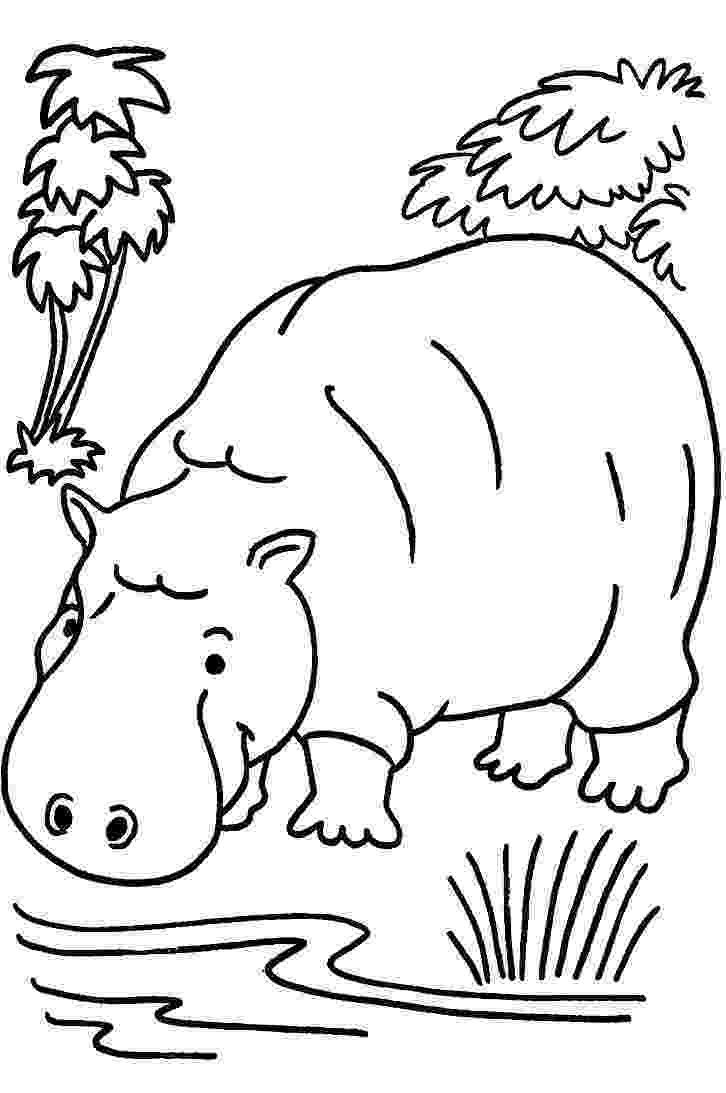 jungle animals coloring pages for toddlers safari animals coloring pages getcoloringpagescom jungle pages toddlers coloring for animals