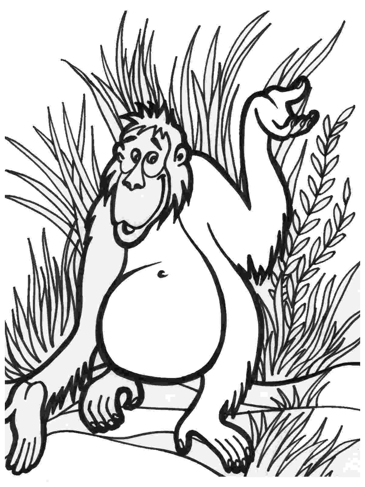 jungle animals coloring pages safari and jungle animals coloring pages for kids itsy pages jungle coloring animals