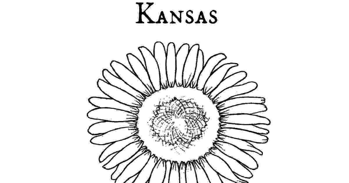 kansas state flower state flower coloring book kansas state flower sunflower state kansas flower