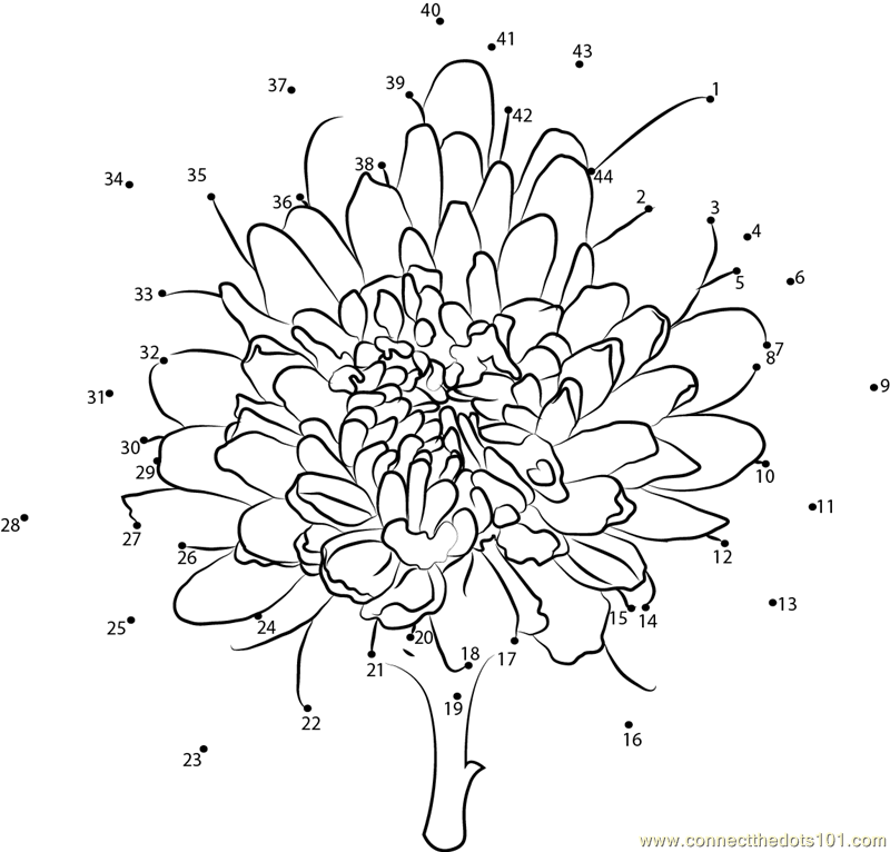kevin henkes coloring pages chrysanthemums drawing at getdrawingscom free for coloring pages kevin henkes
