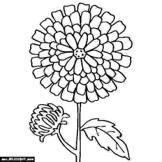 kevin henkes coloring pages kevin henkes coloring pages 173 chrysanthemum drawing kevin coloring pages henkes