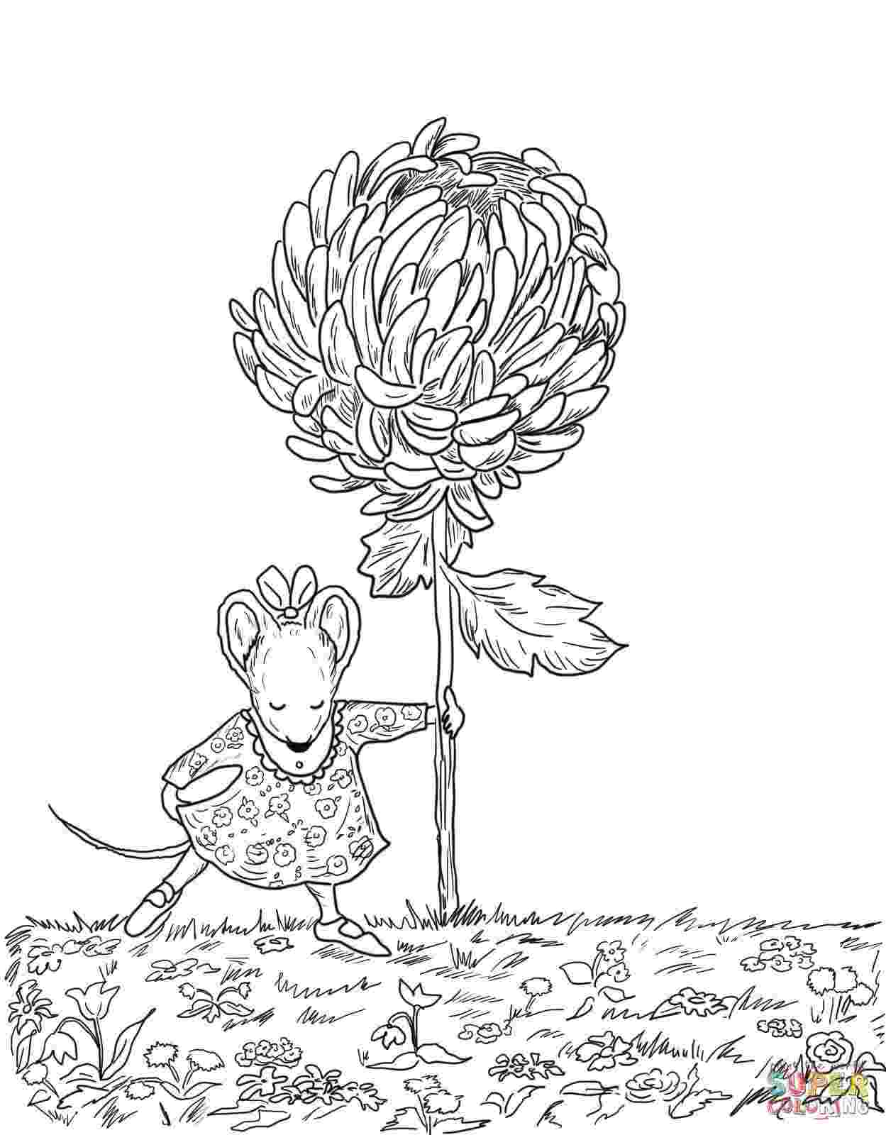 kevin henkes coloring pages loads of activities to go with the story quotchrysanthemum pages henkes kevin coloring