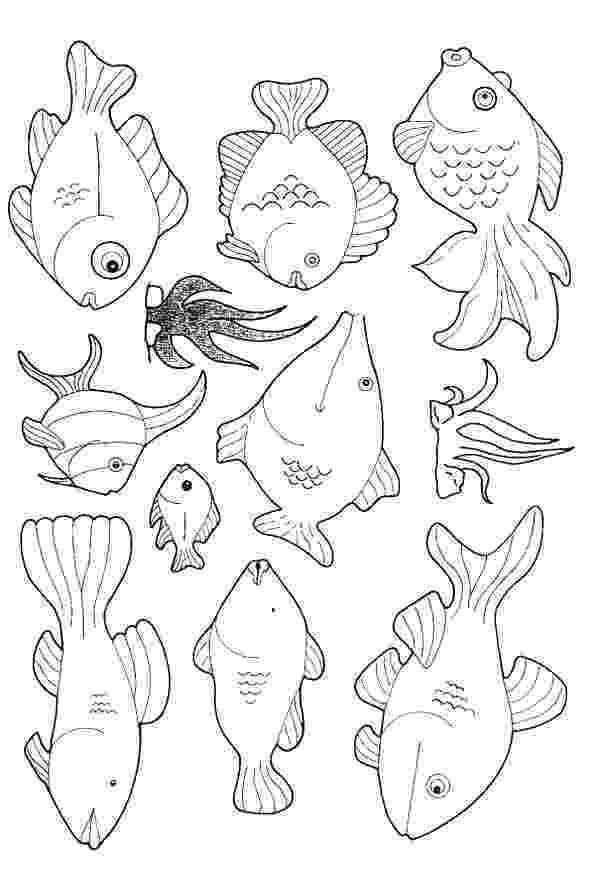 kids pictures of fish free printable fish coloring pages for kids tiger cub of pictures kids fish