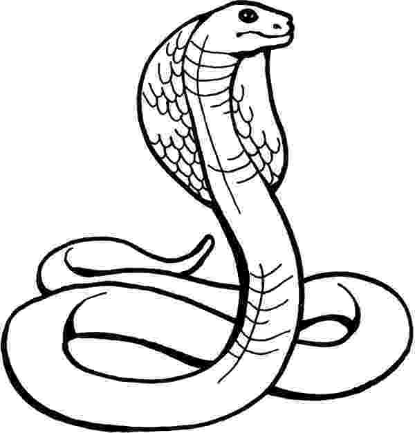king cobra coloring pages cobra coloring pages for kids gtgt disney coloring pages king coloring cobra pages