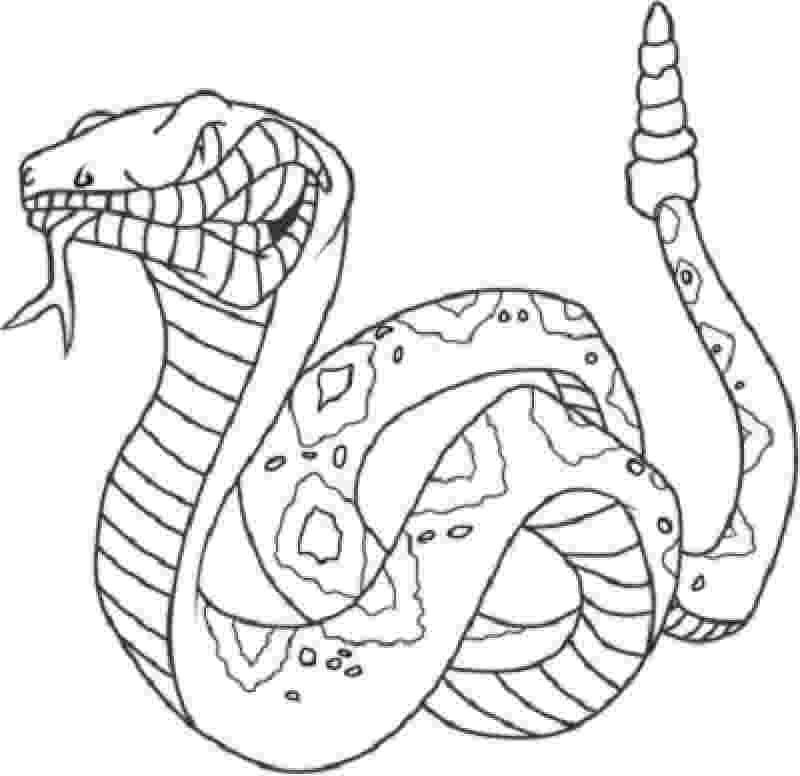 king cobra coloring pages king cobra snake coloring pages download and print for free pages king cobra coloring