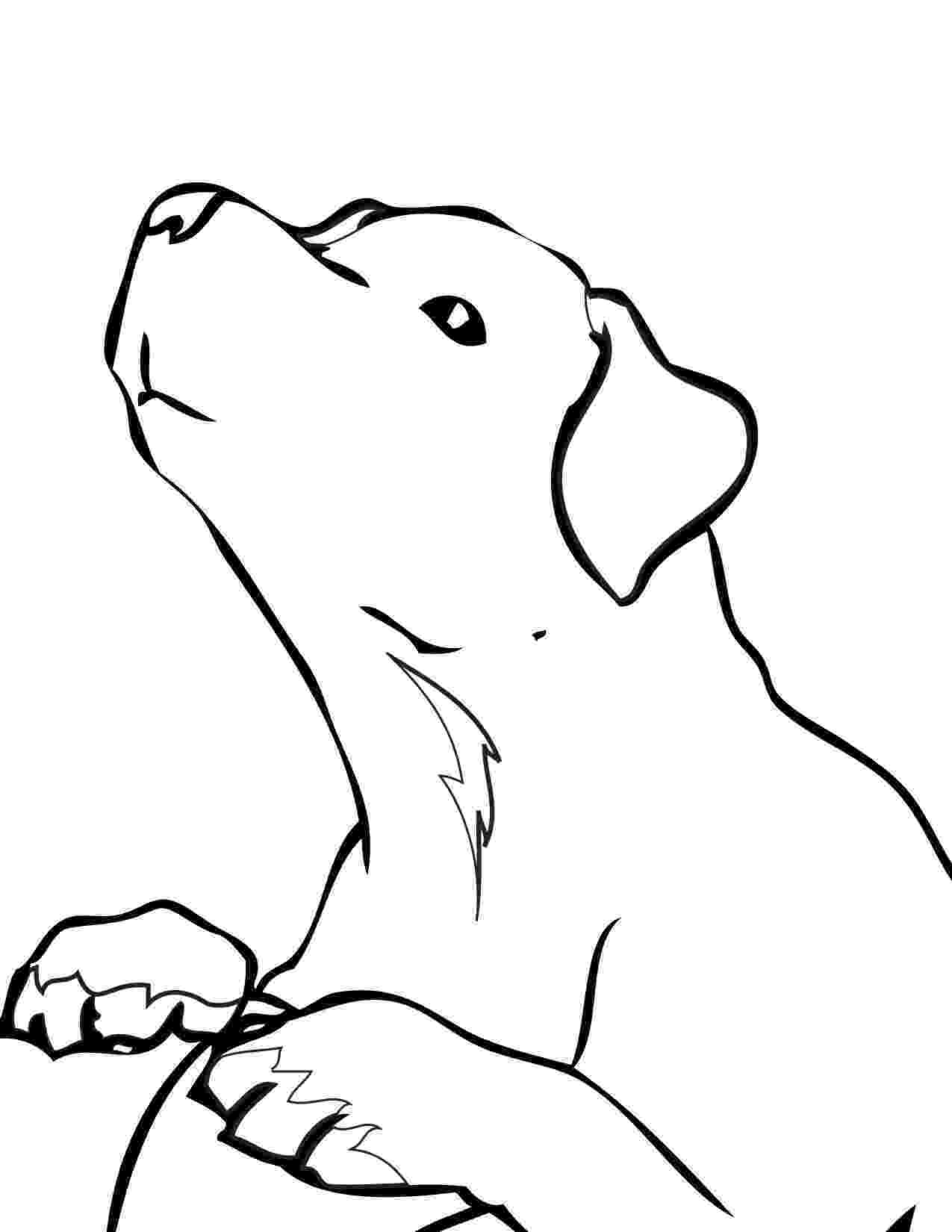 labrador coloring pages clipart illustration of a cute and curious labrador pages labrador coloring