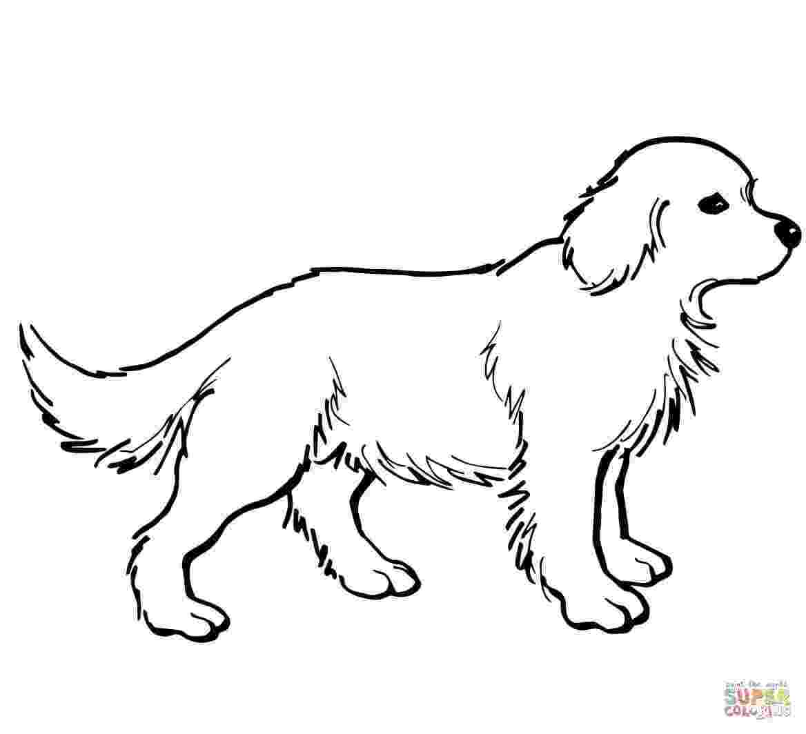 labrador coloring pages free printable dogs and puppies coloring pages for kids pages labrador coloring