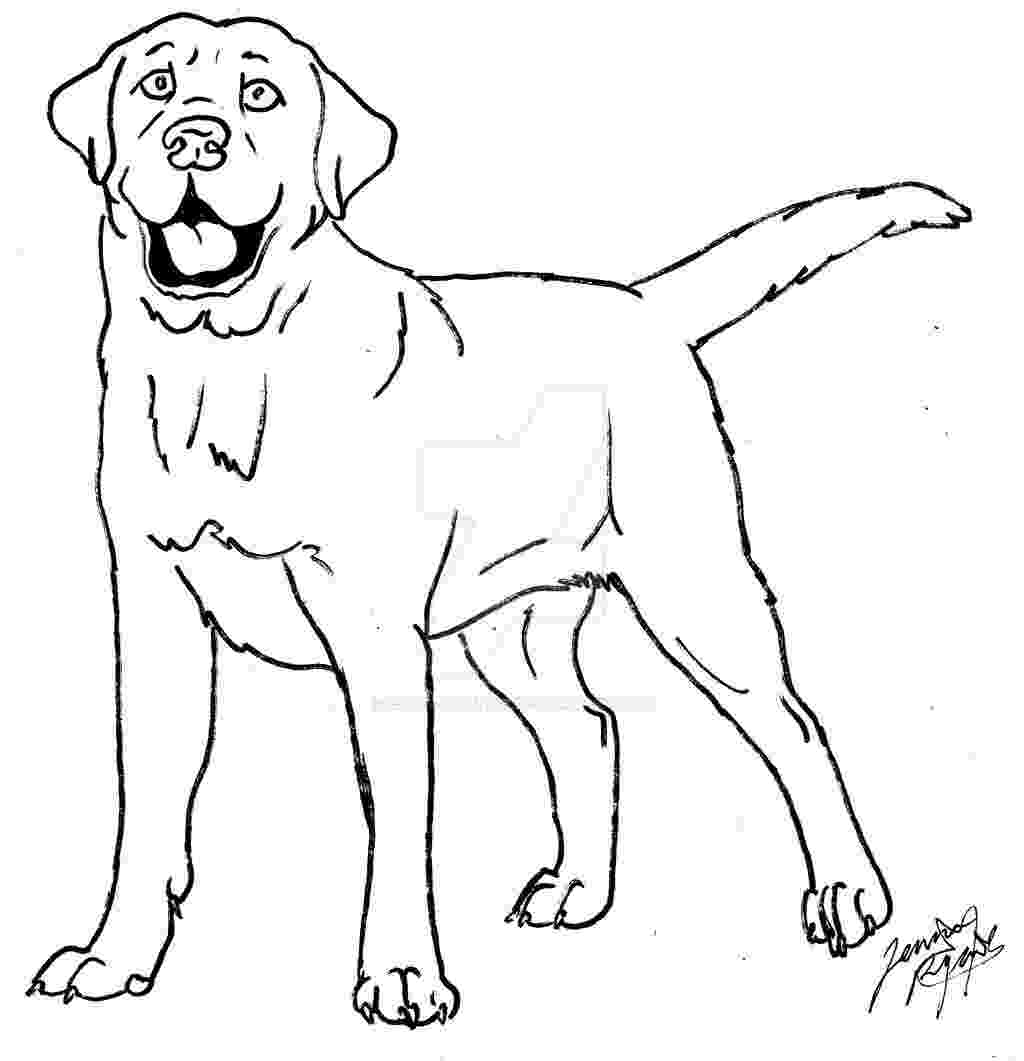 labrador coloring pages labrador coloring page by canis simensis on deviantart coloring labrador pages