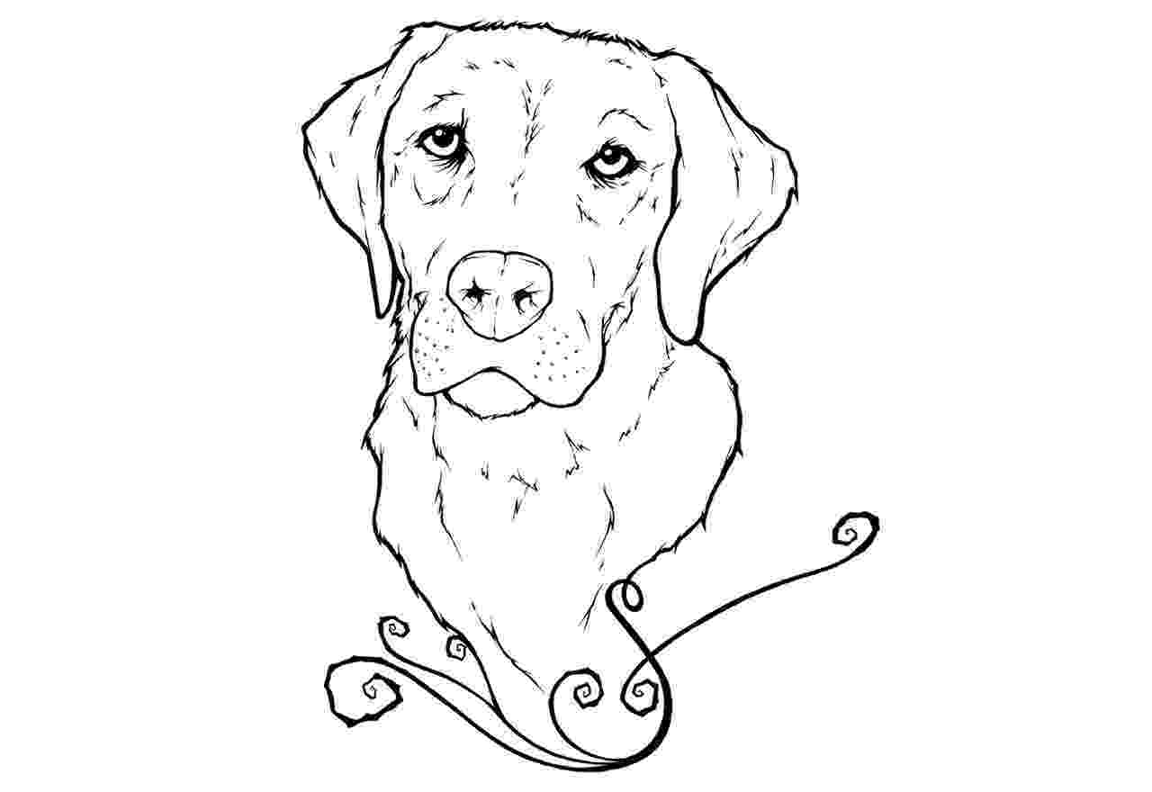 labrador coloring pages labrador retriever coloring page free printable coloring coloring labrador pages