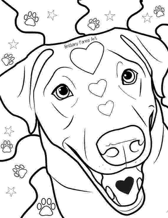 labrador coloring pages labrador retriever coloring page free printable coloring labrador pages coloring