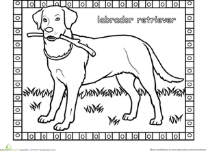 labrador coloring pages labrador retriever puppies by midnightfoal on deviantart labrador pages coloring