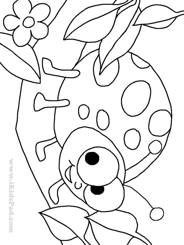 lady bug coloring pages free printable ladybug coloring pages for kids pages coloring bug lady