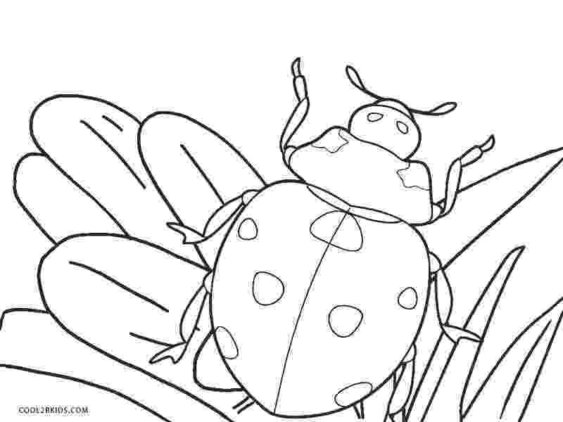 lady bug coloring pages ladybug coloring pages getcoloringpagescom lady pages bug coloring