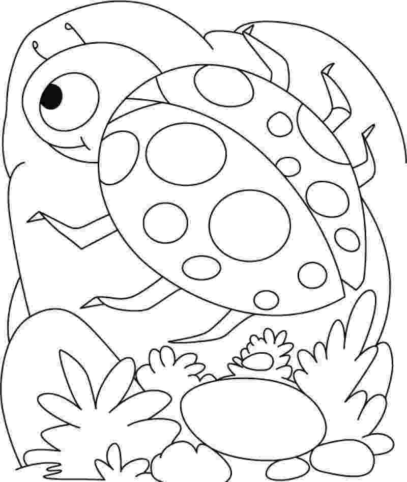 ladybugs coloring pages printable bug coloring pages for kids cool2bkids ladybugs pages coloring