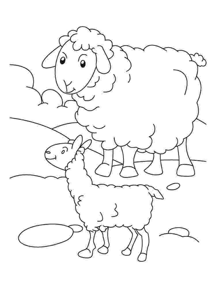 lamb color free printable sheep face coloring pages for kids cool2bkids lamb color