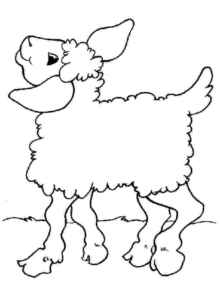 lamb color lamb coloring pages download and print lamb coloring pages color lamb