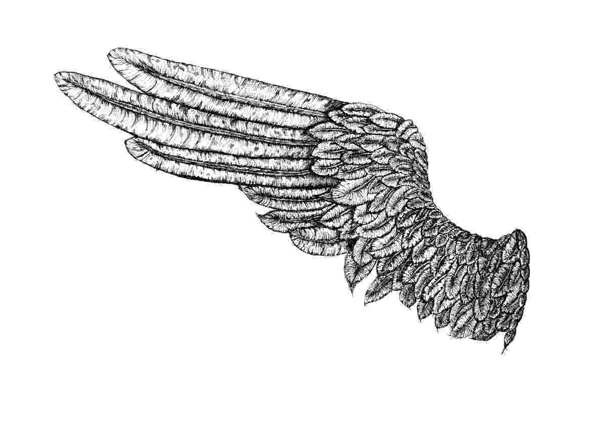 left angel wing angel wings free angel wing clip art free vector for free wing angel left